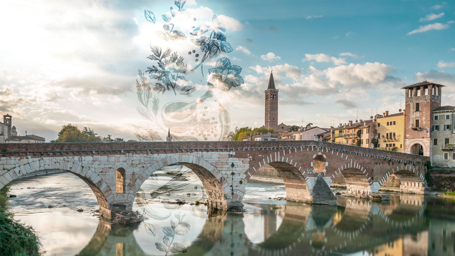 Primo festival Cucina Veneta verona